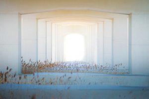 תיקון דלתות פלדלת בגן רווה