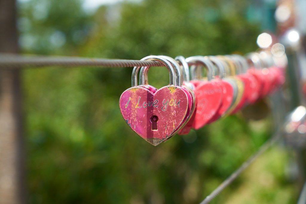 תיקון דלתות בלב השרון