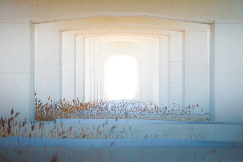 תיקון דלתות כניסה בגן רווה
