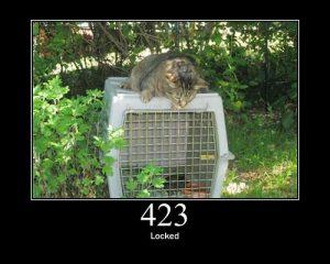 תיקון דלתות פנדור בחבל מודיעין